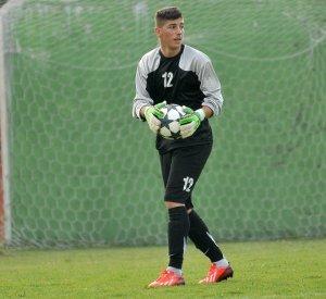 Nikola Marković: FK ČSK Pivara Čelarevo