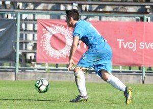 Stefan Vasić: FK Jagodina